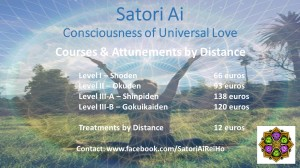 Satori Rei Courses by distance (2)