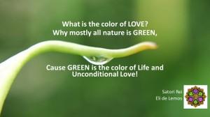 The Color of Love - Satori Rei