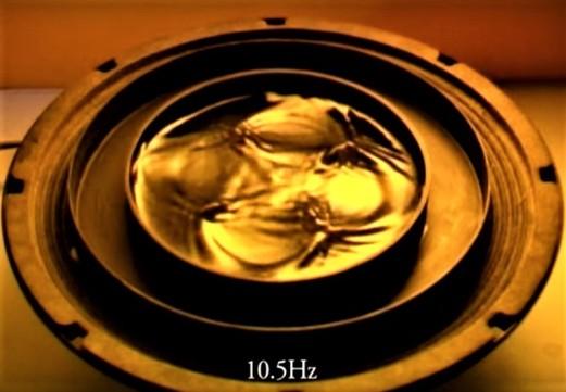 10.5 Hz