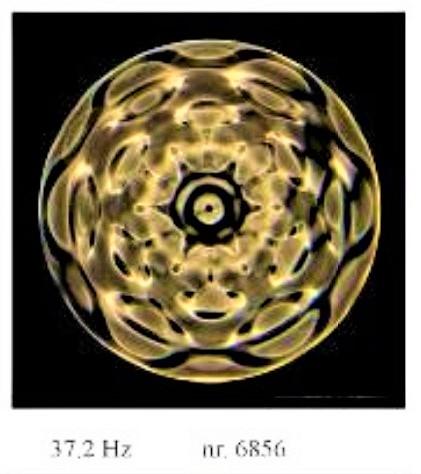 37.2 Hz - danny b